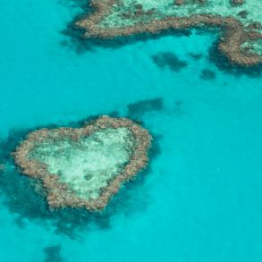 Cairns tour great barrier reef heart eiland