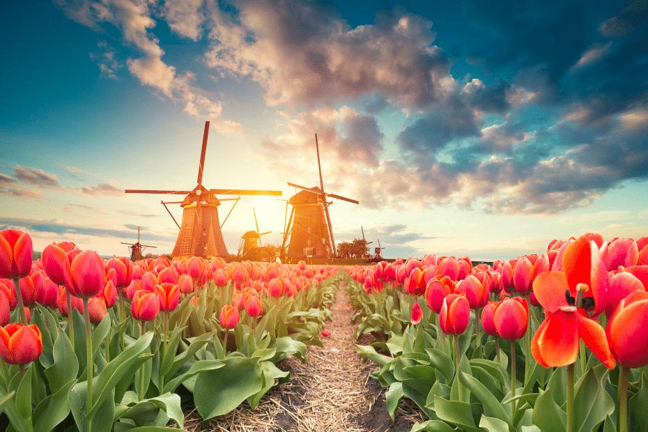 Reizen Nederland